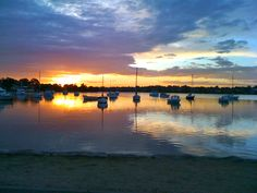 The Bay Run - on the shores of Iron Cove in Sydney. A great harbourside walking/jogging trail.
