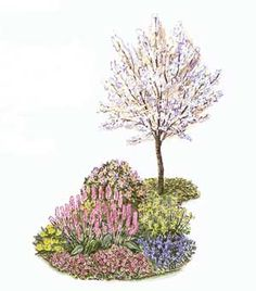 This garden plan features a host of easy-growing, deer-resistant perennial flowers so you can enjoy a beautiful landscape, even when there are herds of deer around. Garden Beds, Home And Garden, Garden Plants, Side Garden, Garden Care, Landscaping Jobs, Luxury Landscaping, Front Yard Landscaping, Beautiful Gardens
