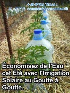Vous cherchez une façon économique d'arroser votre jardin ? Voilà qui tombe bien ! Car aujourd'hui, je voulais partager avec vous une astuce d'irrigation solaire au goutte à goutte permettant d'économiser votre eau.  Découvrez l'astuce ici : http://www.comment-economiser.fr/irrigation-solaire-goutte-a-goutte-facile.html?utm_content=bufferc641d&utm_medium=social&utm_source=pinterest.com&utm_campaign=buffer