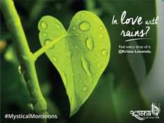 The beauty secret of #Nature is here; it's the #Rains. Enjoy the beauty of nature @ Krisna Lonavala. Experience #MysticalMonsoons. Book your #Suite now on www.krisnalonavala.com #LonavalaScenes #KrisnaLonavala #HappyMonsoon #MondayMotivation