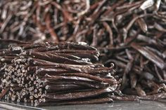 A Trip to Tahiti: The Origin of the World's Best Vanilla. We take a look at how vanilla beans are grown and cured on the farms where we source our premium vanilla in Tahiti. Aquaponics Kit, Backyard Aquaponics, Aquaponics Plants, Grow Vanilla Beans, Cacao Powder Benefits, Vanilla Plant, Growing Gardens, Herbs Indoors, Cacao Nibs
