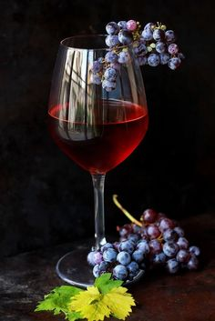 wine flower glass food produce drink red wine still life material painting wine glass stemware alcoholic beverage still life photography drinkware Glass Photography, Fruit Photography, Still Life Photography, Close Up Photography, Wine Painting, Fruit Painting, Art Du Vin, Wine Glass, Glass Art