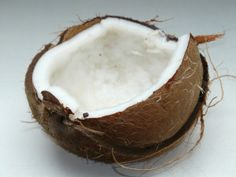 The coconut is truly one of nature's treasures. Right now, the biggest buzz word in natural health is coconut, and the amazing therapeutic benefits of this humble food, particularly the oil, have been loudly touted of late