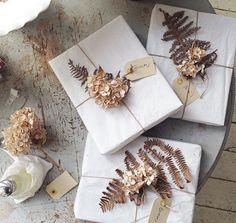 dead/dried bracken ferns & hydrangea