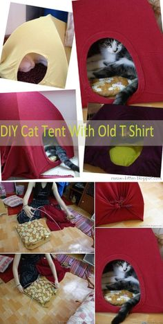Reuse Old T-shirts to Make Cat Tents – DIY