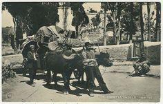 İSTANBUL 1905