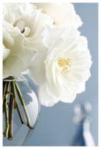 Zalewski - White Roses Bouquet