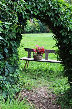 Park, Garden, Passage, Flowers, Bank, Plant #park, #garden, #passage, #flowers, #bank, #plant