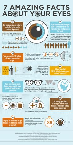 Pretty cool infographic detailing some lesser known facts about our eyes. Did you know about these 7 amazing facts about your eyes? Health And Wellness, Health Tips, Health Care, Health Benefits, Tips & Tricks, Health Facts, Good To Know, The Best, Healthy Living