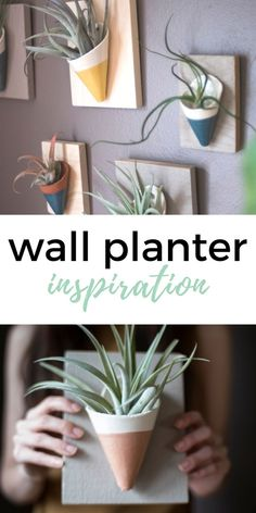 wall planter made wi
