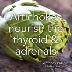 Artichokes nourish the thyroid & adrenals  Learn more about the healing powers of artichokes in Life-Changing Foods, link in profile