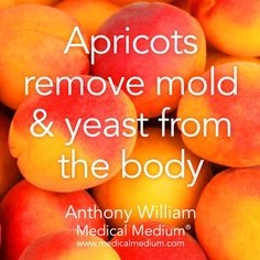 Apricots remove mold & yeast from the body Learn more about the healing powers o… - Health Detox Health Facts, Health And Nutrition, Health Tips, Nutrition Jobs, Natural Health Remedies, Natural Cures, Herbal Remedies, Natural Healing, Holistic Remedies