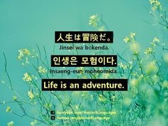 How do you say 'Life is an adventure.' in your language? #Korean: 인생은 모험이다. (Insaeng-eun moheomida.) #Japanese: 人生は冒険だ。(Jinsei wa bōkenda.)