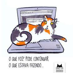 Livro que ilustra rotina de gatos destina lucro a projeto de adoção | Gatices - Folha de S.Paulo - Blogs