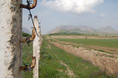 Through the wire - The Kyrgyzstan/Uzbekistan border. Ernist Nurmatov (RFE/RL)