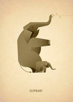 Alfabeto-com-Animais-Marcus-Reed-e