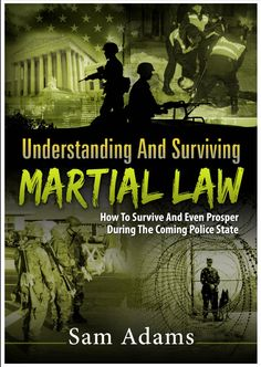 Martial law - Understanding And Surviving Martial Law book cover.