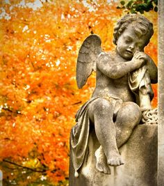 angel. Elmwood Cemetery, Memphis, TN. photo by Paula Cravens.