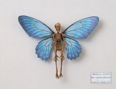 Art-Sci: Specimens of Mythological Creatures Displayed in Japanese Museum -- click to read article and for more photos