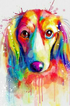 Dachshund Longhaired Dachshund Tattoo, Dachshund Art, Daschund, Arte Pop, Dog Paintings, Dog Art, Pet Portraits, Dog Pictures, Art Drawings