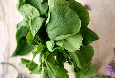 3 pomysły na wykorzystanie liści rzodkiewki – jak gotować i nie marnować? – Kuchnia w formie Spinach, Vegetables, Food, Essen, Vegetable Recipes, Meals, Yemek, Veggies, Eten