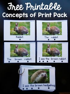 forest animals concepts of print pack This concepts of print activity would work well with a forest animal theme.This concepts of print activity would work well with a forest animal theme. Kindergarten Literacy, Early Literacy, Preschool Curriculum, Preschool Ideas, Reading Activities, Literacy Activities, Reading Skills, Guided Reading, Teaching Reading