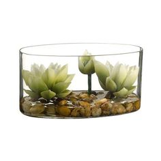 """8"""" Lotus Silk Flower Arrangement -Cream/Green ($221) ❤ liked on Polyvore featuring home, home decor, floral decor, plants, fillers, decor, nature, green artificial flowers, ivory silk flowers and green silk flowers"""