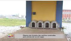"""""""O Grito do Bicho"""": Objetos são furtados das casinhas construídas para..."""