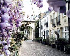 Best London Mews Streets: Kynance Mews