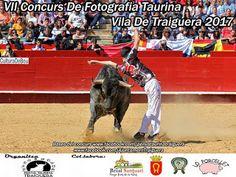 torodigital: Concurso de fotografia en Traiguera