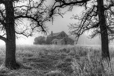 Paranormal Dreams