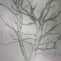 #myart #art #tree #drawing #sketch