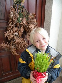 """Oliver is pictured above with the """"badnjak"""" and the """"žito"""" they were sell at our local market yesterday. They are both Serbian Christmas traditions. I blogged about the Christmas Eve tradition of t..."""