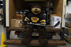 DECEMBER 29 : Mascot Blades of the Boston Bruins sits in the equipment truck in his Winter Classic jersey before the game against the Ottawa Senators at the TD Garden on December 29, 2015 in Boston, Massachusetts. (Photo by Steve Babineau/NHLI via Getty Images) - Bruins vs. Senators - 12/29/2015 - Boston Bruins - Photo Galleries