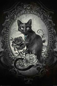 Buy Alchemy (Paracelcus) Black Cat online and save! Alchemy (Paracelcus) Black Cat Maxi Poster 61 × Our posters are rolled, wrapped and shipped in poster mailing tubes Dark Gothic Art, Gothic Artwork, Dark Art, Black Cat Tattoos, Kitty Tattoos, Tattoo Black, Fantasy Kunst, Fantasy Art, Dark Fantasy