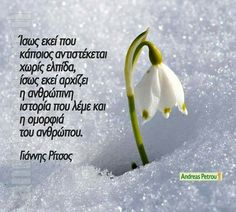 Great Words, Wise Words, Greek Quotes, Karma, Me Quotes, Literature, Poetry, Wisdom, Letters