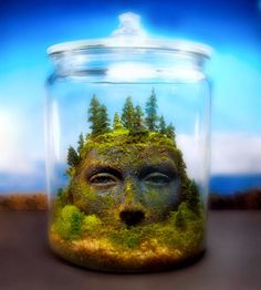 I love tiny terrariums! They are a great way to bring a little green into your house. Hope you will enjoy this collection :)
