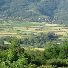 Zeleno srce Srbije