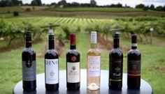 Поздравляем всех с 1 сентября! Специально ко дню знаний мы подготовили занимательную статью об изготовлении вина. Статья доступна по ссылке: http://vintagemarket1.blogspot.com/2015/09/blog-post.html Читаем, комментируем, делимся с друзьями. Всем хорошего настроения и удачного дня #read #reading #почитать #wine #вино #магазин #pub #bar #liquor #can #cocktails #thirst #thirsty #omnomnom #drink #vintage #follow #me #girls #girl #коктейли #ресторан #днепропетровск #днепр #dnepr #dp #київ #киев…