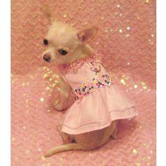 Pink Fantasy Floral Dog Harness Dress - 3 Piece Set