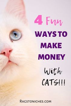 Extra income ideas, ways to make money from your hobbies and passions! What about Cats? Here are 4 unique ways that you can make money with cats. Cash From Home, Make Money From Home, Way To Make Money, How To Make, Cat Online, Online Cash, Hobbies For Men, Hobbies That Make Money, Legit Work From Home