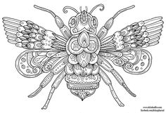 Bee - Hand-Drawn Illustration by WelshPixie on DeviantArt Bee Coloring Pages, Animal Coloring Pages, Mandala Coloring, Coloring Sheets, Coloring Books, Mandala Art, Coloring Canvas, Bee Art, Doodle Art