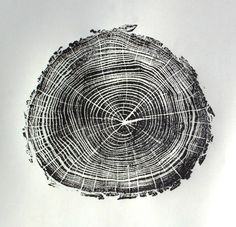 tree rings texture - Google Search