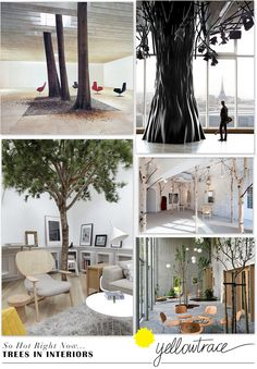 So Hot Right Now // Trees in Interior Design | Curated by Yellowtrace.