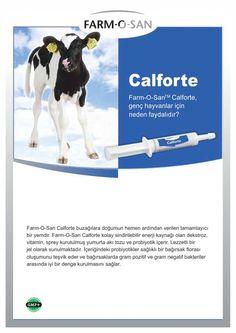 Calforte | Demsa Genetik