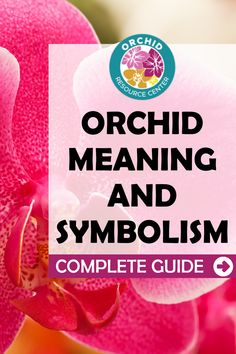 Have you ever wondered what orchids represent? Learn more about your orchid's meaning and what it represents with this Orchid Meaning and Symbolism Guide.