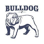 Find British Bulldog Mascot Emblem Dog Illustration stock images in HD and millions of other royalty-free stock photos, illustrations and vectors in the Shutterstock collection. Dog Illustration, Illustrations, Dog Vector, Vector Art, Bulldogge Tattoo, Mini English Bulldogs, Bulldog Drawing, Bulldogs Ingles, Bulldog Mascot