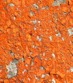 Flakes of Dark Orange Paint. Looks like artwork     Grandin Road Color Crush on Burnt Orange