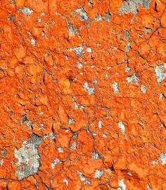 Orange Flaking Paint