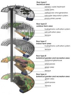 The 5 Terre Style Vertical Farm is made up of five vertical sectors dedicated to indoor and outdoor farming areas, a farmers market, an aquaculture farm, and/or building system (energy or water). (Image courtesy of Capellini Architects)